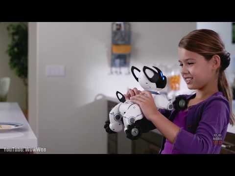 10 Most Lifelike Pet Robots That Could Replace Animals
