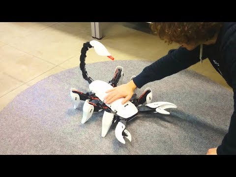 Scorpion Hexapod Robot – A Cool Robot That Has A Sting In Its Tail.